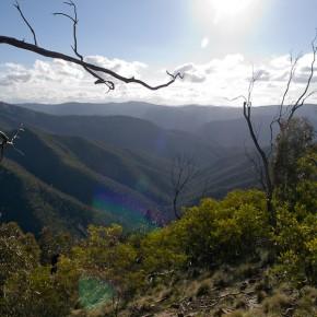 Сходил в гору - парк Tidbinbilla