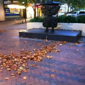 Осень в Канберре 2