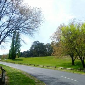 Парк Королей