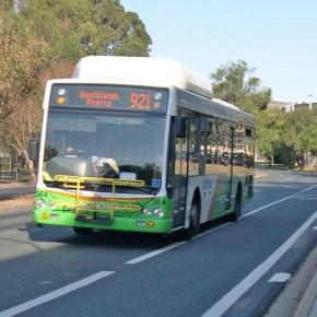 Автобусы в Канберре