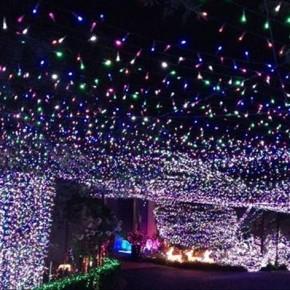 В Канберре самая большая новогодняя иллюминация в мире