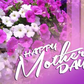 Сегодня - День Матери