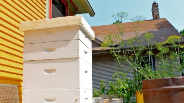 Beekeepers 01