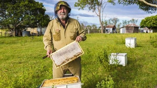 Beekeepers 02