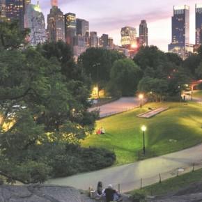 Мельбурнцы общаются с деревьями по электронной почте