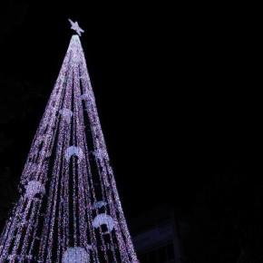 Канберра зажигает рождественские огни